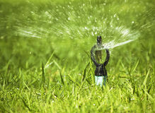 Sprinkler. Close up automatic sprinkler watering green grass Royalty Free Stock Image