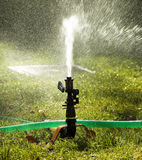 Sprinkler. Watering a garden during a sunny day Stock Photography