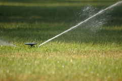 Sprinkler. On grass Stock Photography