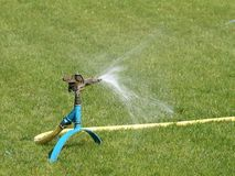 Free Sprinkler Stock Photography - 3163972