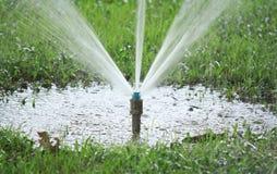 sprinkler Fotografia de Stock
