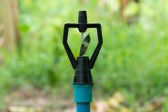 sprinkler Imagem de Stock