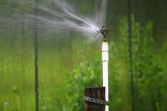 Sprinkler in action Stock Image