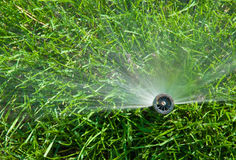 Sprinkler of automatic watering. On grass Royalty Free Stock Photos