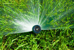 Sprinkler of automatic watering. In garden Royalty Free Stock Photo
