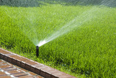 Sprinkler of automatic watering stock photos