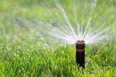 Sprinkler. Automatic sprinkler watering fresh grass Stock Photography