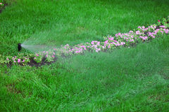 Sprinkler of automatic watering Royalty Free Stock Photography