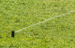 Sprinkler of automatic watering. Watered green grass stock photography