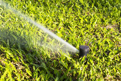 Sprinkler automatic working in the garden Royalty Free Stock Photos