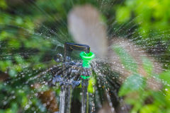 Sprinkler and bokeh. Garden irrigation system watering lawn Stock Photography