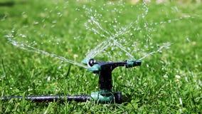 Sprinkler stock video