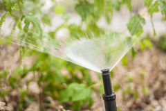 Sprinkler Closeup Stock Photography