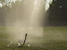 Sprinkler on a football field royalty free stock image