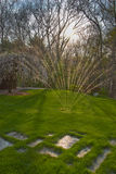 Sprinkler on front lawn vertical. Sprinkler watering lawn back lit by sun royalty free stock image
