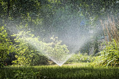SPRINKLER IN THE GARDEN. Sprinkler of automatic watering in the garden royalty free stock photography