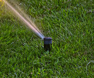 SPRINKLER IN THE GARDEN Stock Photo