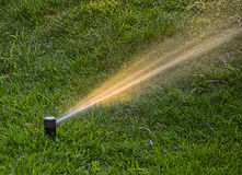 SPRINKLER IN THE GARDEN Stock Photos