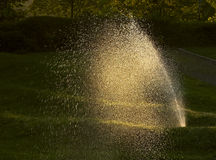 SPRINKLER IN THE GARDEN. Sprinkler of automatic watering in the garden at sunset Royalty Free Stock Photos