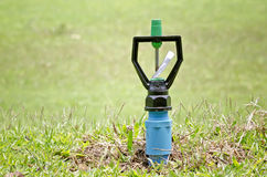 Sprinkler in the garden Royalty Free Stock Photo
