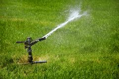 Sprinkler on Grass Stock Images