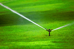 Sprinkler on Grass Stock Image