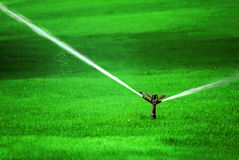Sprinkler on Grass Royalty Free Stock Photography