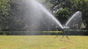 Sprinkler on grass stock footage