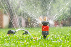 Sprinkler head spraying water Royalty Free Stock Photo