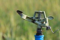 Sprinkler head watering Royalty Free Stock Image