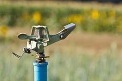 Sprinkler head watering Stock Images