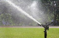 Sprinkler head watering the lawn Stock Images