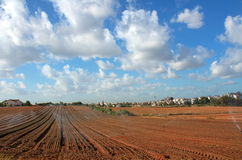 Sprinkler irrigated newly planted field with blue sky and clouds Royalty Free Stock Photos