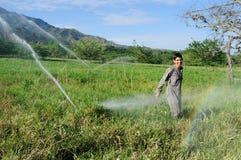 Sprinkler irrigation Stock Photo