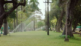 Sprinkler irrigation in a public park. Summer day green trees grass stock footage