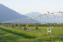 Sprinkler Irrigation System Stock Images