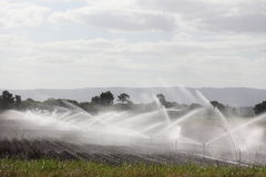 Sprinkler irrigation system. Watering the fields via sprinkler irrigation system (Australian farmland&#x29 Royalty Free Stock Images