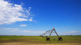 Sprinkler irrigation system Stock Photography