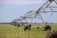Sprinkler irrigation system Royalty Free Stock Photo