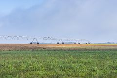 Sprinkler irrigation system in operation Royalty Free Stock Photography