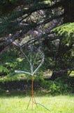 Sprinkler in the park Royalty Free Stock Photo