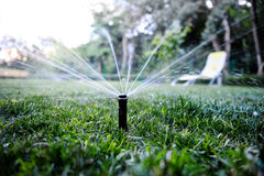 Sprinkler Spraying Water in Backyard Royalty Free Stock Photo