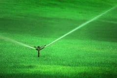Sprinkler Spraying Water on Lush Green Grass Royalty Free Stock Photo