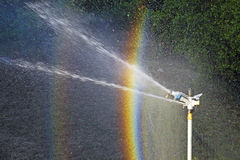 Sprinkler spraying water Stock Photo