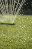 Sprinkler in the sun. Water sprinkler backlit by the sun. Forground of the grass in focus Stock Photography