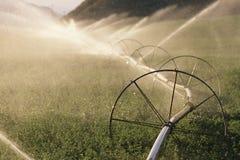 Sprinkler system Stock Image