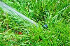 Sprinkler system watering the lawn on a background of  gras. Sprinkler system watering the lawn on a background of green grass Royalty Free Stock Images