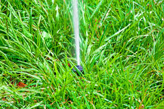Sprinkler system watering the lawn on a background of  gras. Sprinkler system watering the lawn on a background of green grass Royalty Free Stock Image