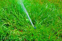 Sprinkler system watering the lawn on a background of green gras. S Stock Photo