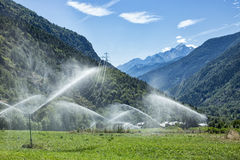 Sprinkler system watering pasture. Sprinkler system watering mountain pasture, tree-covered mountains and snow covered mountain far in background, sunny day Royalty Free Stock Image